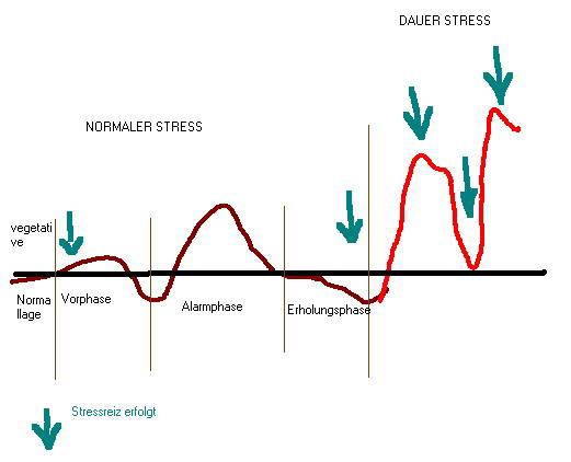 Dauerstress